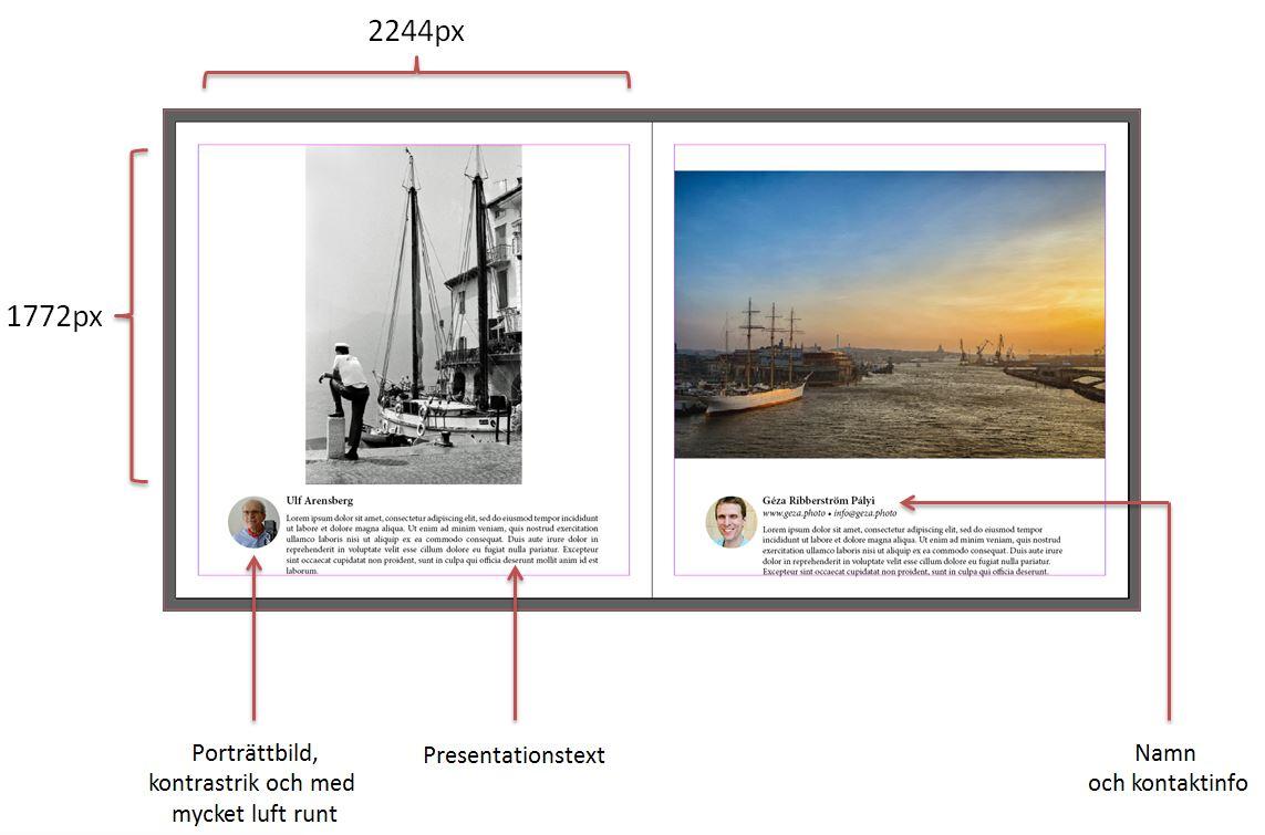 Bild-jubileumsbok