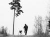 Tilda Franklin - Tillit på hund (silverplakett)
