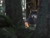 img_5523-robert-lj-n-ark-3-a7135811a6266a5f38f6439cdacaa5f42bf5befb
